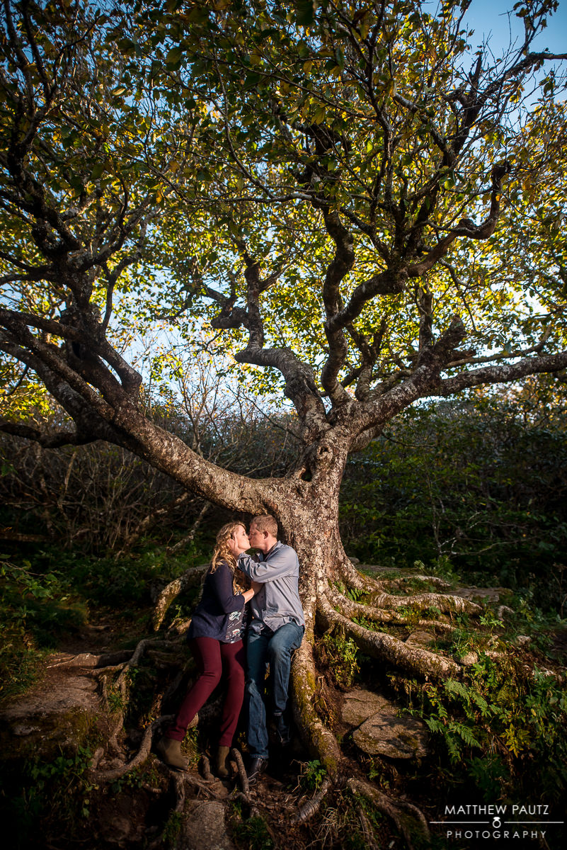 Craggy Gardens Mountain Engagement Photos